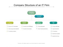 Company Structure Of An It Firm