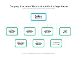 Company Structure Of Horizontal And Vertical Organisation