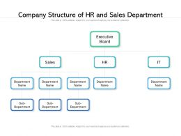 Company Structure Of HR And Sales Department