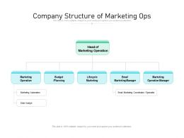 Company Structure Of Marketing Ops
