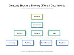 Company Structure Showing Different Departments