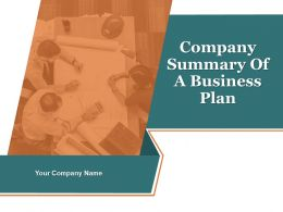 Company Summary Of Business A Plan Powerpoint Presentation Slides