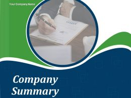 Company Summary Powerpoint Presentation Slides