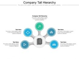 Company Tall Hierarchy Ppt Powerpoint Presentation Portfolio Images Cpb