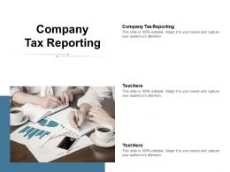 Company Tax Reporting Ppt Powerpoint Presentation Icon Example File Cpb
