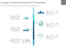 Company Timeline Example Ppt Presentation