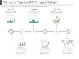 Company Timeline Ppt Images Gallery