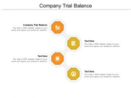 Company Trial Balance Ppt Powerpoint Presentation File Example Topics Cpb
