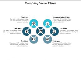 Company Value Chain Ppt Powerpoint Presentation File Outfit Cpb