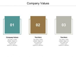 Company Values Ppt Powerpoint Presentation Gallery Graphic Tips Cpb