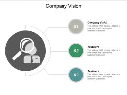 Company Vision Ppt Powerpoint Presentation File Designs Download Cpb