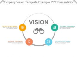 Company Vision Template Example Ppt Presentation