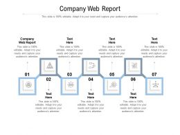 Company Web Report Ppt Powerpoint Presentation Infographic Template Format Ideas Cpb