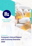 Companys Annual Report With Economy Overview PDF DOC PPT Document Report Template