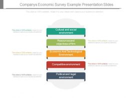 Companys Economic Survey Example Presentation Slides