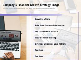 Companys Financial Growth Strategy Image