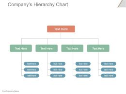 Companys Hierarchy Chart Powerpoint Slide Presentation Tips