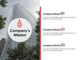 Companys Mission Business Management Ppt Powerpoint Presentation Styles Shapes