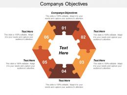 Companys Objectives Ppt Powerpoint Presentation Inspiration Infographics Cpb