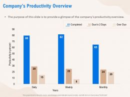 Companys Productivity Overview Years Ppt Powerpoint Presentation Model Examples