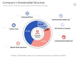 Companys Shareholder Structure N538 Powerpoint Presentation Skills