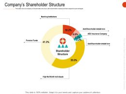 Companys Shareholder Structure Ppt Powerpoint Presentation Professional Slide
