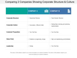 Comparing 2 Companies Showing Corporate Structure And Culture