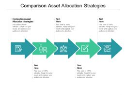 Comparison Asset Allocation Strategies Ppt Powerpoint Presentation Inspiration Cpb