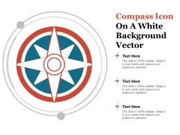 Compass Icon On A White Background Vector