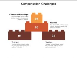 Compensation Challenges Ppt Powerpoint Presentation Portfolio Picture Cpb