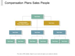 Compensation Plans Sales People Ppt Powerpoint Presentation Styles Graphics Design Cpb