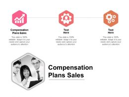 Compensation Plans Sales Ppt Powerpoint Presentation Styles Images Cpb
