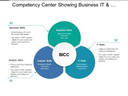 Competency Center Showing Business It And Analytical Skills