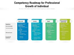 Competency Roadmap For Professional Growth Of Individual