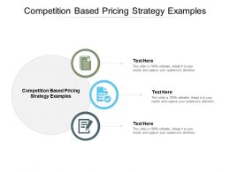 Competition Based Pricing Strategy Examples Ppt Powerpoint Presentation Show Clipart Cpb