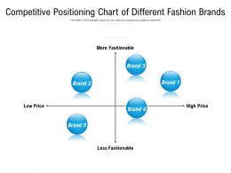 Competitive Positioning Chart Of Different Fashion Brands