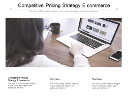Competitive Pricing Strategy E Commerce Ppt Powerpoint Presentation Layouts Icon Cpb