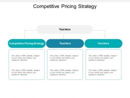 Competitive Pricing Strategy Ppt Powerpoint Presentation Infographic Cpb