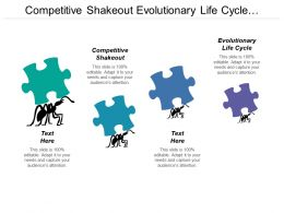 Competitive Shakeout Evolutionary Life Cycle Business Design Team
