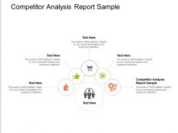 Competitor Analysis Report Sample Ppt Powerpoint Presentation Professional Portrait Cpb