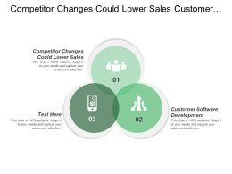 Competitor Changes Could Lower Sales Customer Software Development