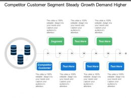 Competitor Customer Segment Steady Growth Demand Higher Cost Sever