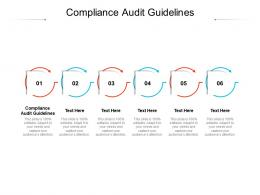 Compliance Audit Guidelines Ppt Powerpoint Presentation Outline File Formats Cpb