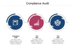 Compliance Audit Ppt Powerpoint Presentation Ideas Layout Cpb
