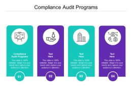 Compliance Audit Programs Ppt Powerpoint Presentation Outline Visual Aids Cpb