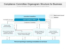 Compliance Committee Organogram Structure For Business