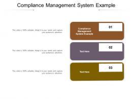 Compliance Management System Example Ppt Powerpoint Presentation Portfolio Design Ideas Cpb