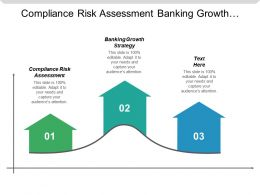 Compliance Risk Assessment Banking Growth Strategy Enterprise Operating Model Cpb
