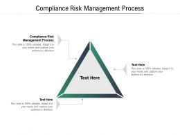 Compliance Risk Management Process Ppt Powerpoint Presentation Styles Portrait Cpb