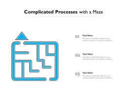 Complicated Processes With A Maze